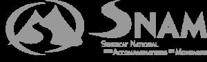 Logo_SNAM SEUL_Gris 500x160